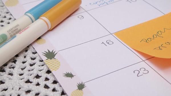 Planejamento mensal - fevereiro de 2014