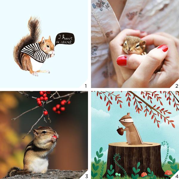 esquilos_love