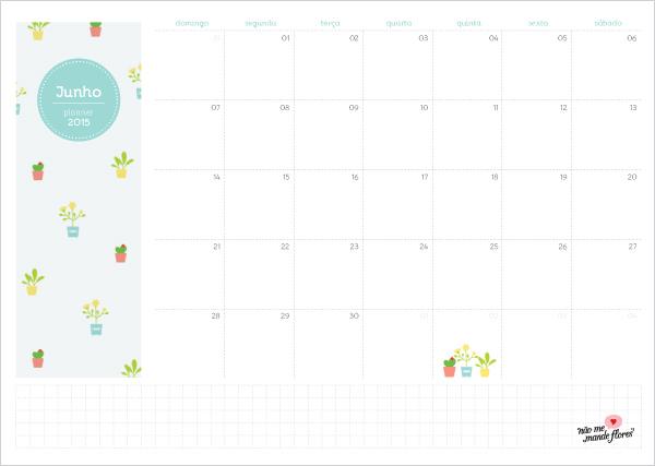 Planejamento Mensal - junho de 2015