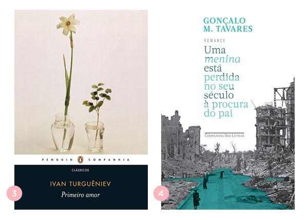 Mini-resenhas dos livros: Primeiro amor e Uma menina está perdida no seu século à procura do pai