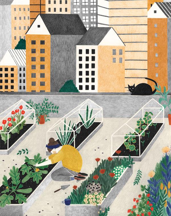 Liekeland | Ilustração por Lieke van der Vorst