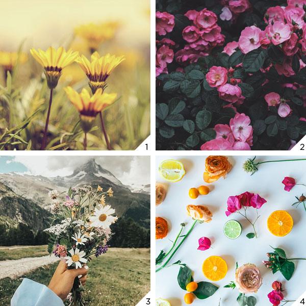 Primavera_love | Não Me Mande Flores