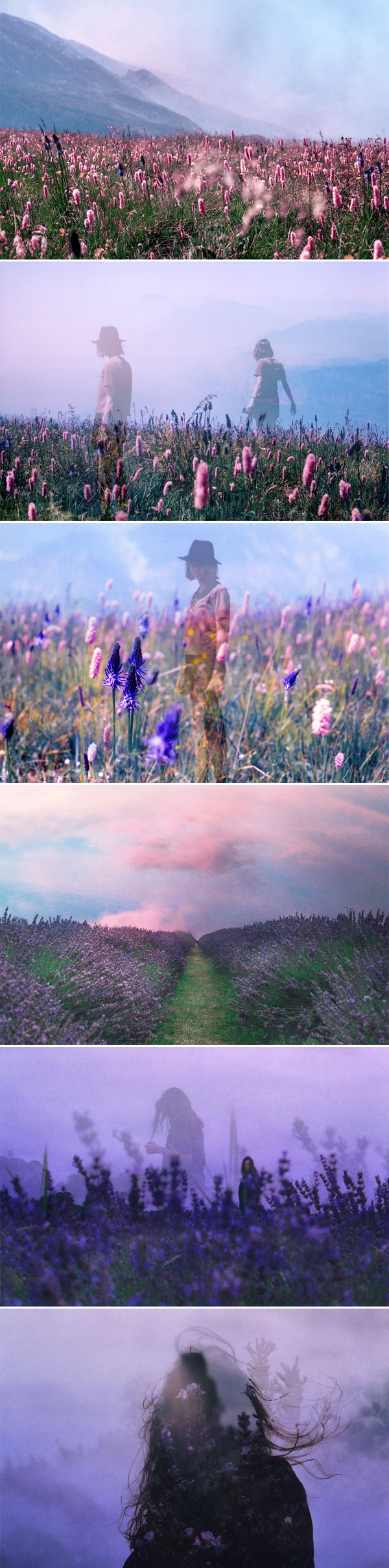Summer Fields by Maya Beano | Photography