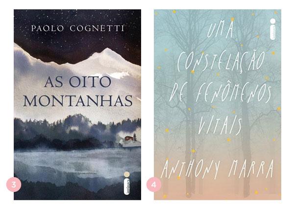 Mini-resenhas dos livros: As Oito Montanhas e Uma Constelação de Fenômenos Vitais | Não Me Mande Flores